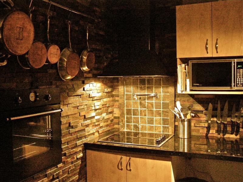 1 bedroom modern condo 10 min to downtown Ottawa - Image 1 - Gatineau - rentals