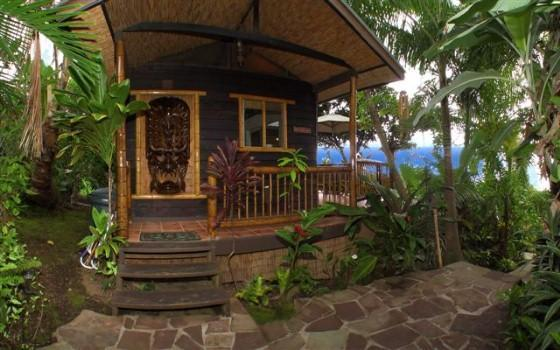 Jungle Cottage Exterior - ROMANTIC HONEYMOON HIDEAWAY - CUTE JUNGLE COTTAGE! - Honaunau - rentals