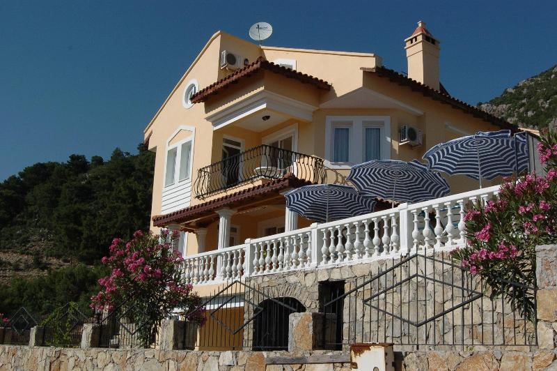 Large Vacation Villa Kadyanda - Large Holiday Villa with Gym/Games Room in Fethiye - Mugla - rentals