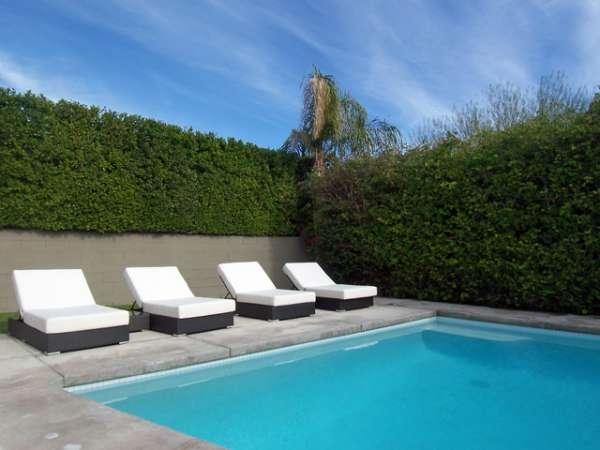 Saltwater Pool and Spa with Four Over-Sized Chaise Lounges - Ruth Hardy Park - Palm Springs - rentals