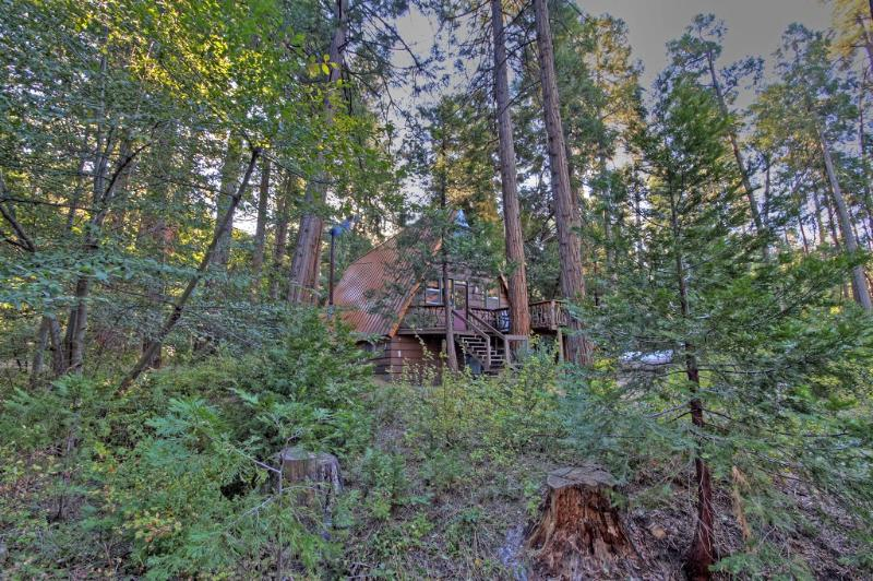 Welcome to Idyllcreek A-Frame Vacation Cabin in beautiful Idyllwild, Califorina - Book Spring Break @ Idyllcreek A-Frame Cabin! - Idyllwild - rentals
