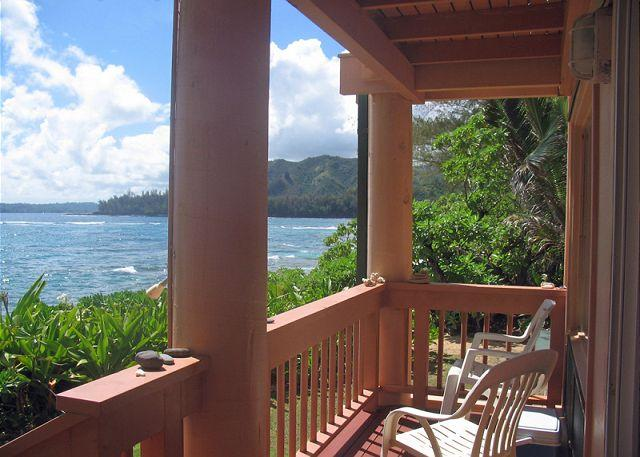 Step out the door and onto the beach!  Romantic upgraded studio.  Views! - Image 1 - Wainiha - rentals
