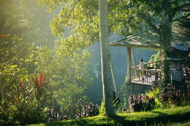 Gorgeous view from our Di Abing restaurant - Chapung Se Bali Villa - Ubud - rentals