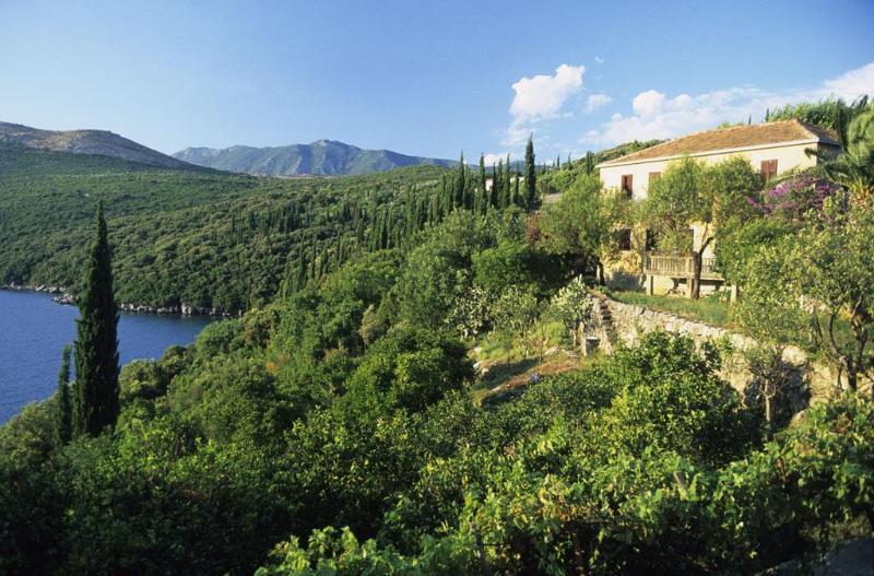 Villa Palma, house - Villa Palma - Dubrovnik - rentals