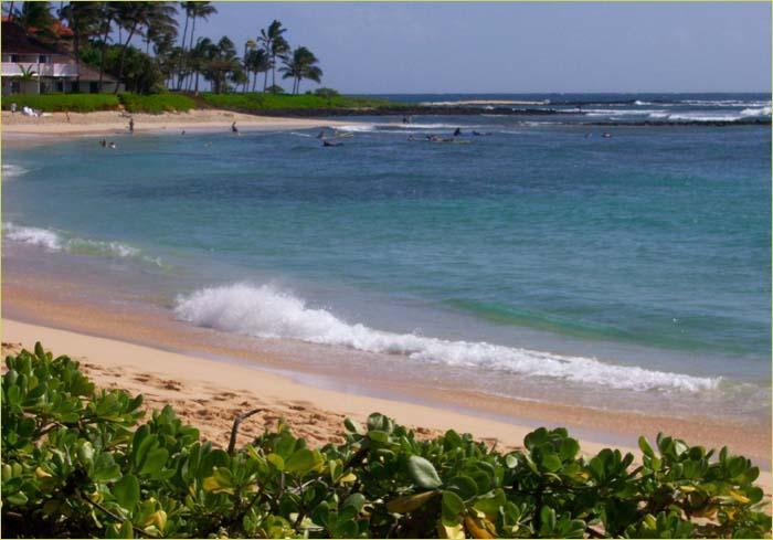 Nearby Poipu Beach...a 10 minute walk - Premier Ocean Close Townhome in the Heart of Poipu - Poipu - rentals