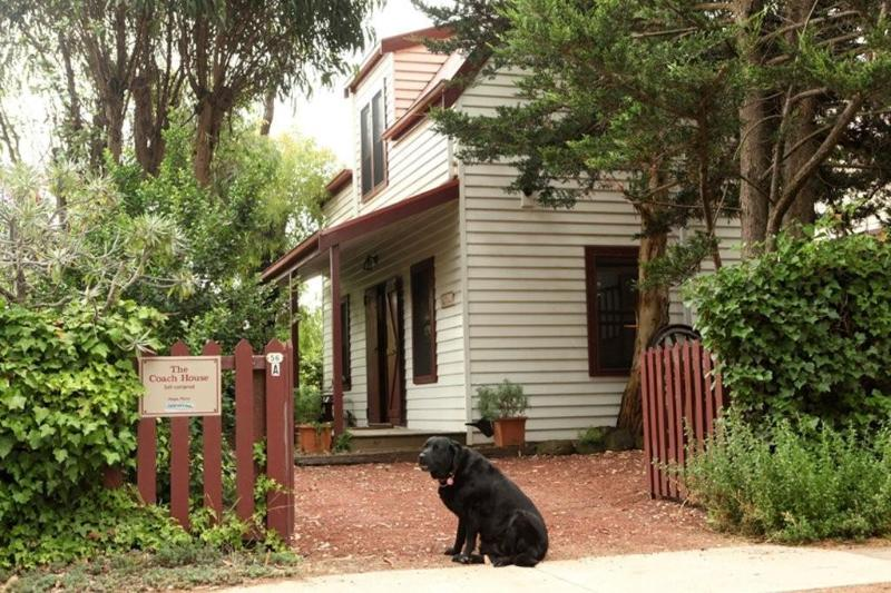 Welcome to The Coach House, Port Fairy - The Coach House, romantic self contained cottage - Port Fairy - rentals