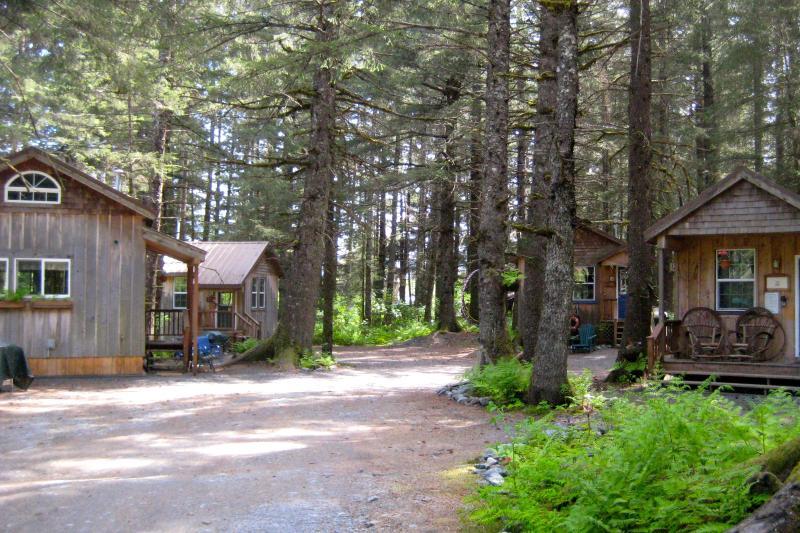 Millane's Serenity by the Sea Bear Glacier Cabin 1 - Image 1 - Seward - rentals