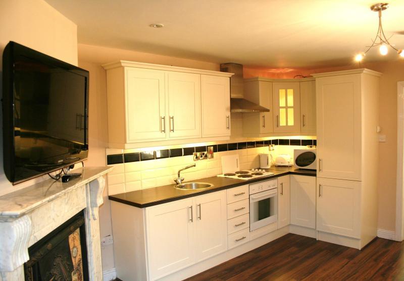 Capel Street apartments - Image 1 - Dublin - rentals