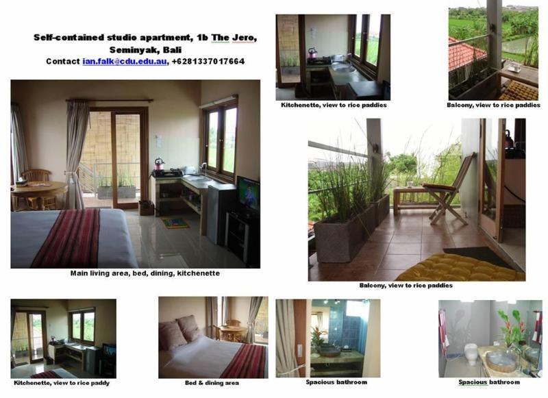 Rice Paddy Room, 1b The Jero, Seminyak - JERO 1b: S/C apartments Seminyak Bali 10 min beach - Seminyak - rentals