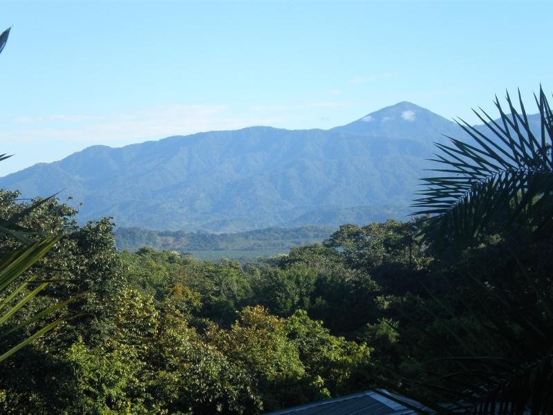 Mountain View from the house - The Family Jungle House - Quepos - rentals