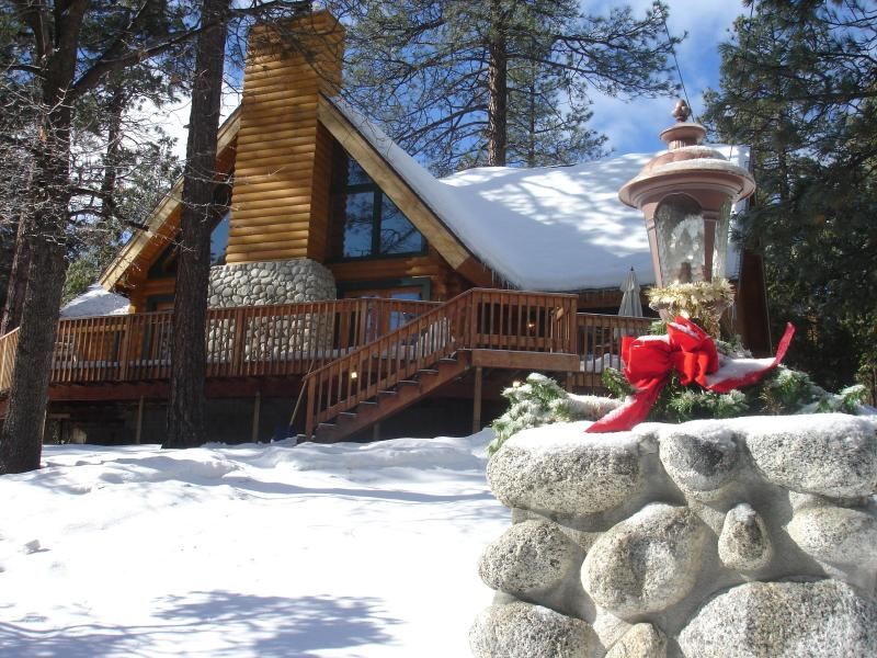 Mountain Living At It\'s Best! - Luxury Mountain Log Home - in most desirable area - Idyllwild - rentals