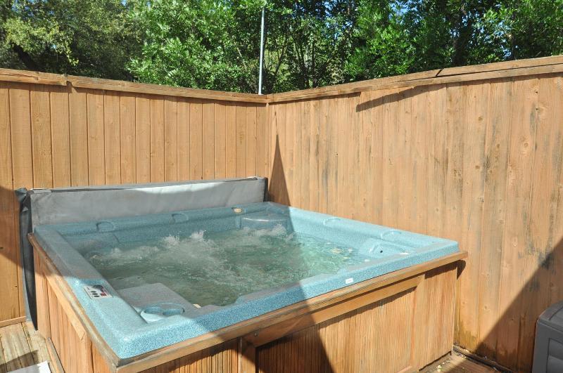 The Traveler - 2/1 w/ Hot Tub! - Image 1 - Austin - rentals