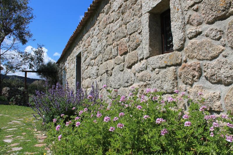 The Stazzo - B&B Stazzo Chivoni. Lost in the Nature - Luogosanto - rentals