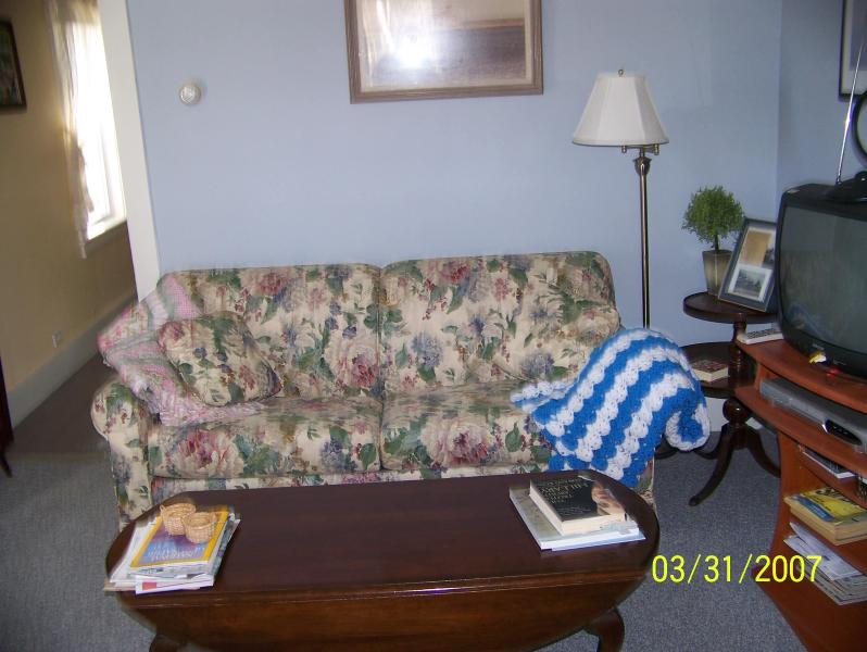 More of living room - Mullein Hill Cottage cozied in Acadia Natl.Park - Mount Desert - rentals