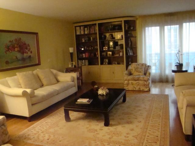 Spacious Salon - Bastille - Luxury Family Apartment/Great Terrace - Paris - rentals
