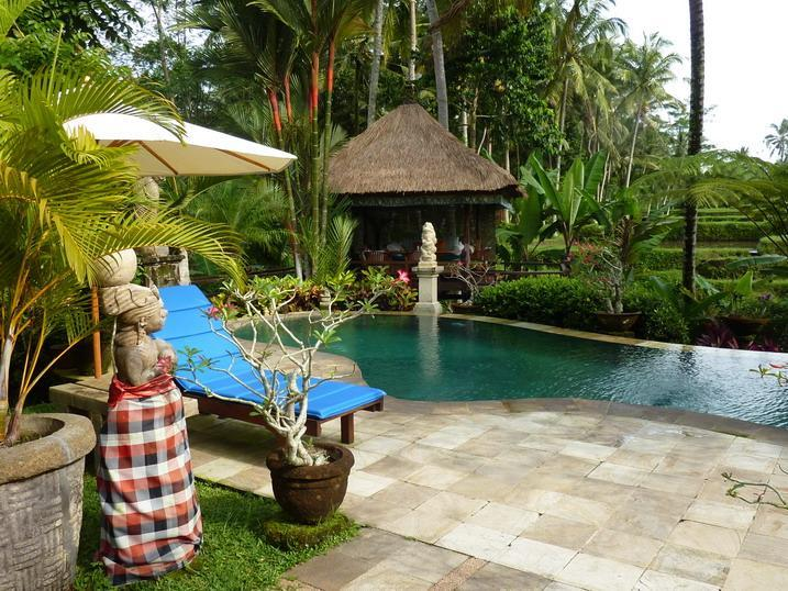 Pool with breakfast Pavillion - As a  private guest in Villa Orchid Bali - Ubud - rentals