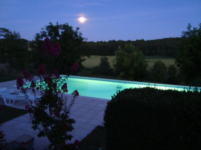 Pool viewed from house - Hilltop Farmhouse with large pool - Grand Brassac - rentals