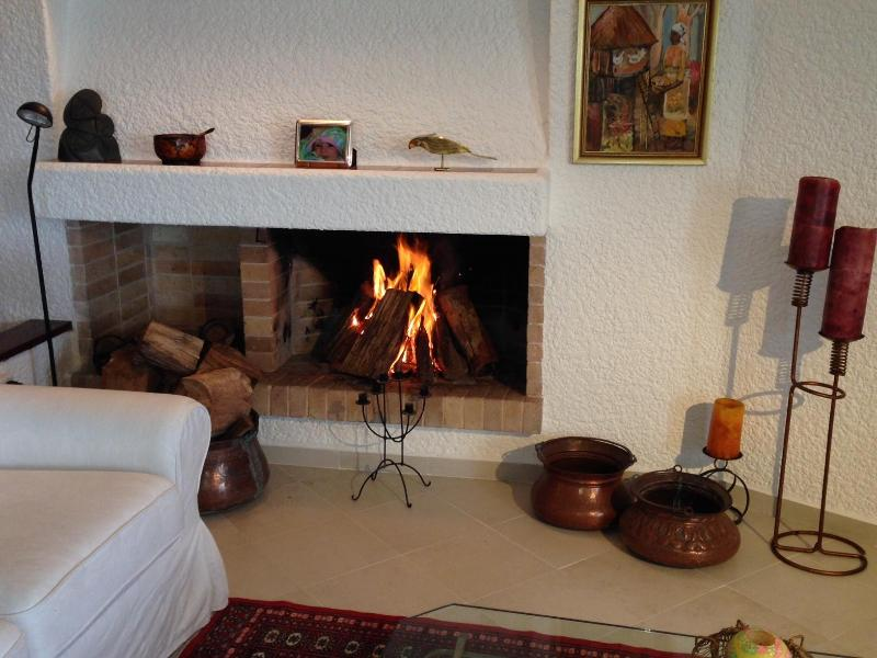 Living room with fire place - South America's most desired beach destination - Punta del Este - rentals