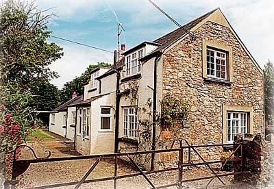 Pet Friendly Holiday Home - Cross House, Dinas Cross - Image 1 - Dinas Cross - rentals