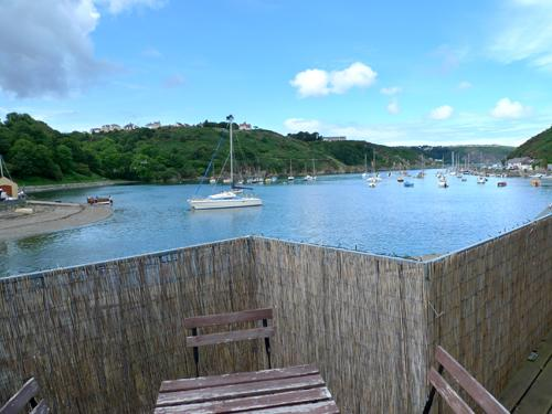Pet Friendly Holiday Cottage - Caledonia House, Lower Town, Fishguard - Image 1 - Fishguard - rentals