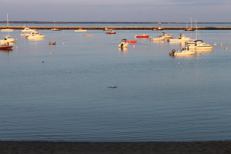 As the sun sets,enjoy the colors of Cape cod Bay - Unit #8 Lower Studio w/ queen size bed & waterview - Provincetown - rentals