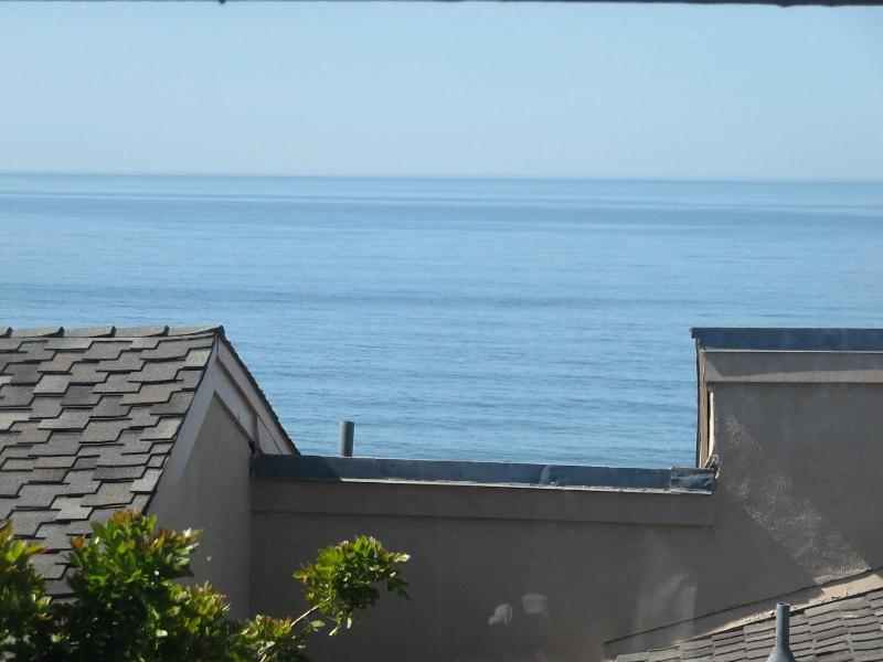View from Living Area - Solana Beach/Del Mar, Calif. - Solana Beach - rentals