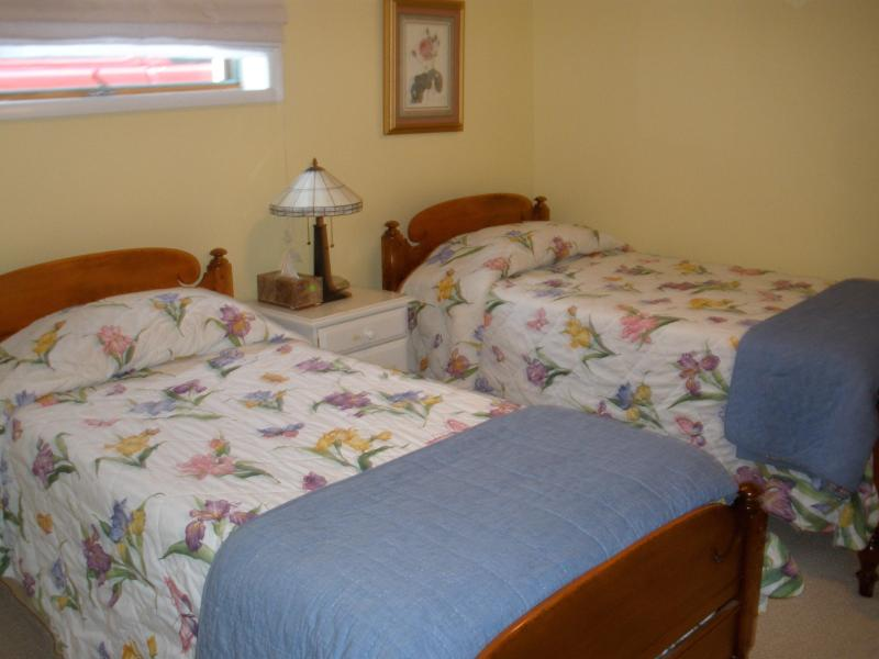 Second bedroom - Daisy Hill Condo on Lake Mitchell in Cadillac, MI - Cadillac - rentals