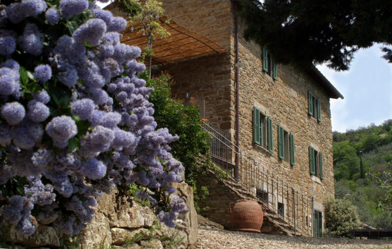 Villa with pool near Cortona - Villa Acrisio - Image 1 - Cortona - rentals