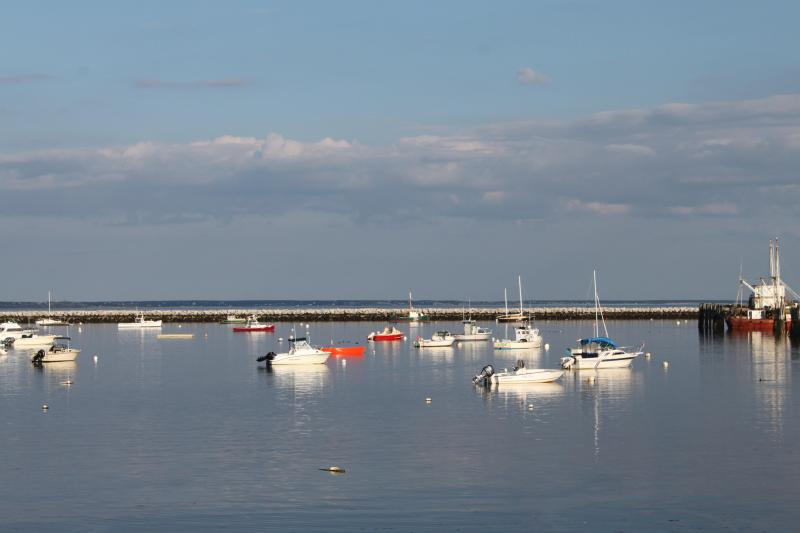 Provincetown Harbor view from our shared deck - 1st floor studio  #18 steps from the waterfront - Provincetown - rentals