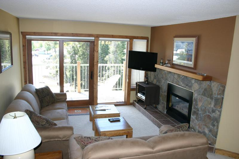 Updated Living Room with Gas Fireplace and HDTV - Updated - Near Downtown-SKI-in-Great Winter Rates! - Breckenridge - rentals