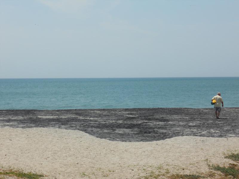 Multi-colored Sand Beach - Coronado Beach Beauty - Panama - Coronado - rentals