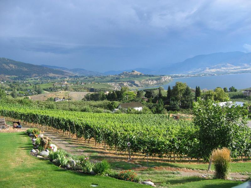View of the vineyard and Penticton - Arta - 2 BR Vacation Suite with Stunning Lakeviews - Penticton - rentals