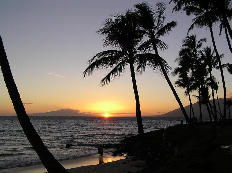 Kamole II Beach Sunset - Walk to Beach, Condos Garden View #253 - Kihei - rentals