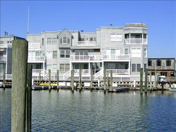 Property 3367 - Wonderful Condo in Cape May (3367) - Cape May - rentals