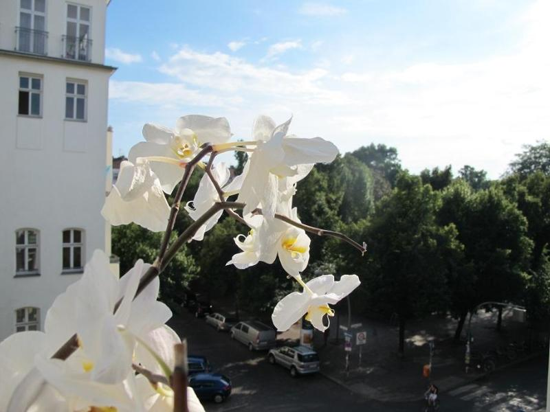 Views from the apartment - Spacious, Bright Apartment at Am Boxi in Berlin - Berlin - rentals