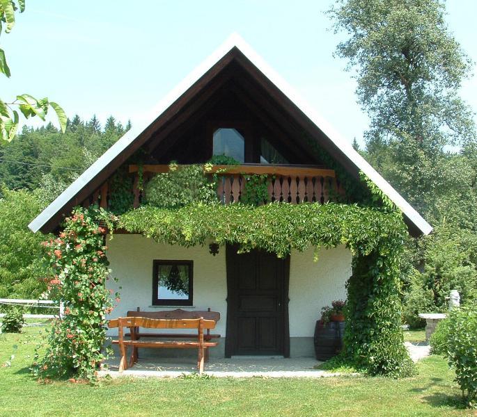 Apartment house SARA - Image 1 - Bled - rentals