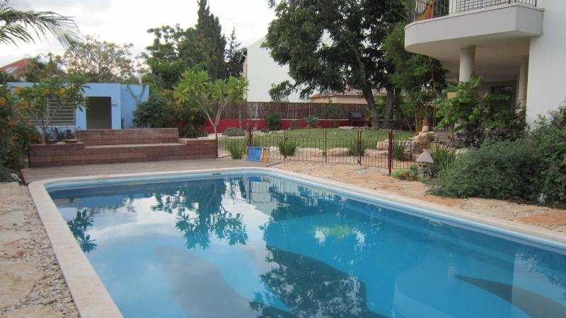 Totally private pool shared with the owner family only. Yours alone  am - 2 pm.  (can be changed) - Eco Garden Apartment with Private Pool - Herzlia - rentals