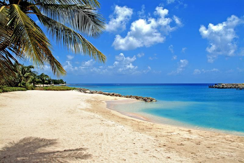 Point of View - Image 1 - Barbados - rentals