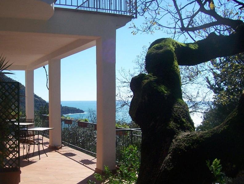 Terrace for breakfast - B&B La casa del gelso in Maratea (Basilicata) - Maratea - rentals