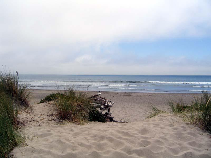 View From The Dunes In Front of 8 Jose Patio - Couderc - Stinson Beach - rentals