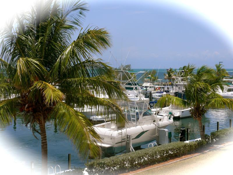 Our balcony view - Oceanfront villa in Key Largo - Key Largo - rentals