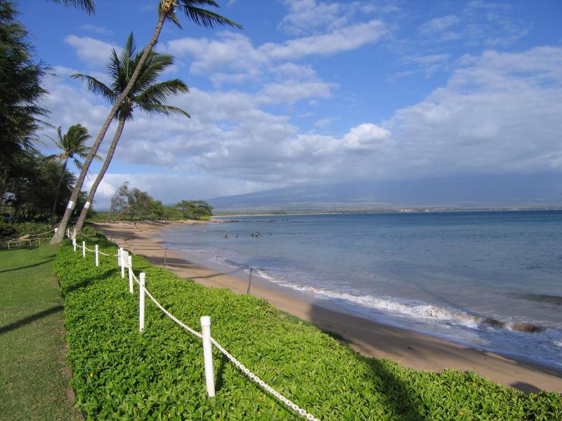 Beautiful oceanfront property with 4 miles of undeveloped privacy - Wheelchair accessible condo 100 feet to the ocean! - Maalaea - rentals
