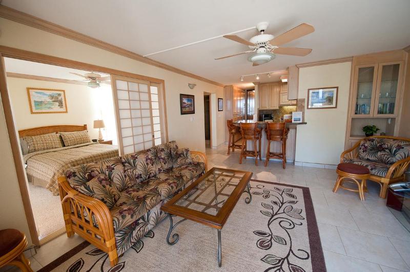 spacious living room - Spectacular Maalaea Bay Upscale Rental - 2 Bedroom - Maalaea - rentals