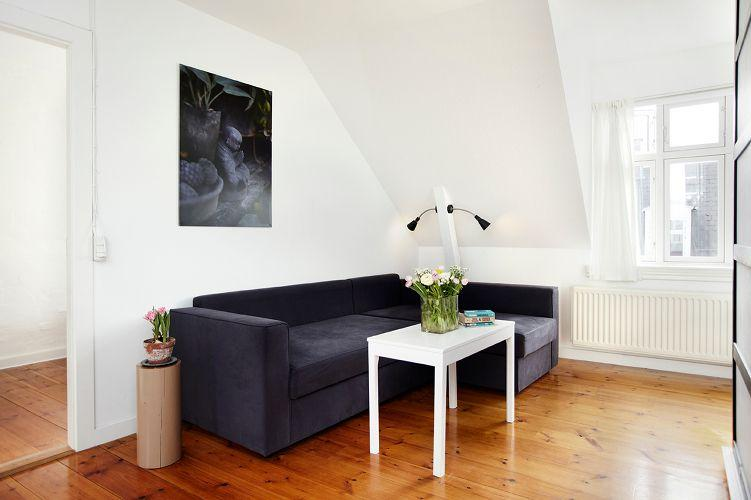 Laessoeesgade Apartment - Cosy Copenhagen apartment at the lakes - Copenhagen - rentals