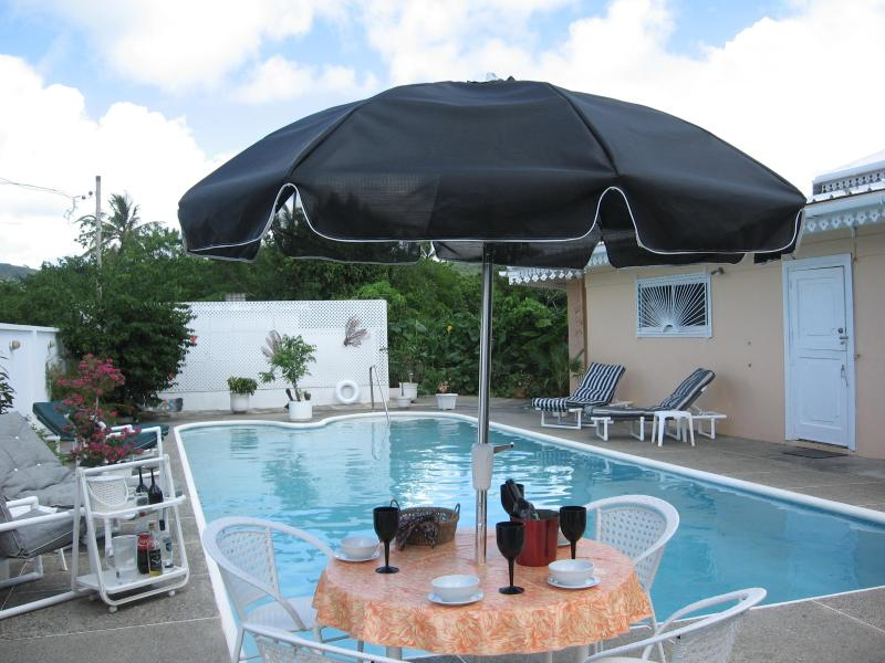 Dine or just relax by the 40 foot pool-or enjoy lap swimming - Flipkey'sTopVillaRental 4BED villa Nr..QUIET BEACH - Tobago - rentals