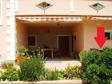 SA3(2): garden terrace - 3040 SA3(2) - Bibinje - Bibinje - rentals