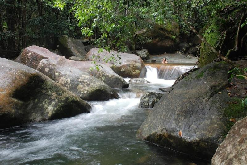Private swimming holes and waterfalls - Stonewood Retreat - Daintree Accommodation - Daintree - rentals