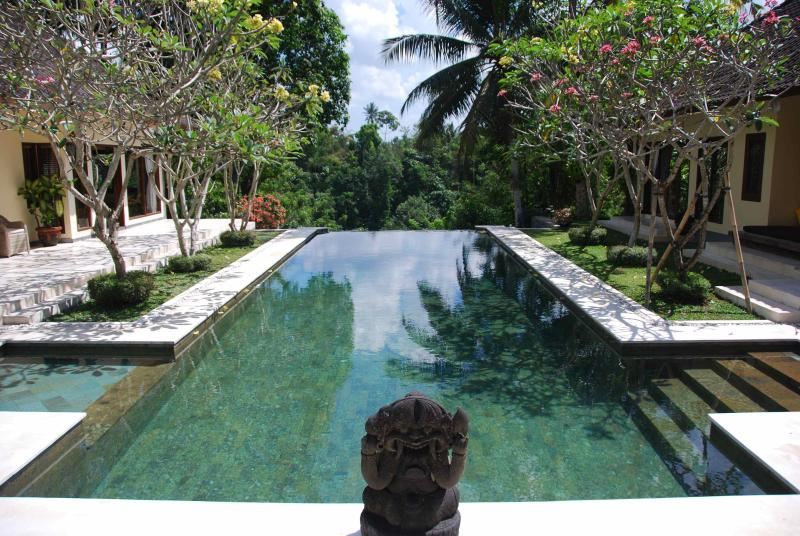 Crystal clear swimming pool - Luxury cliff-top villa: river view + tennis court - Canggu - rentals