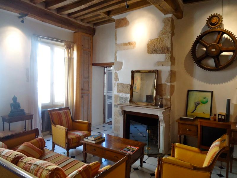 Spacious high ceiling medieval old town apartment - Image 1 - Dijon - rentals