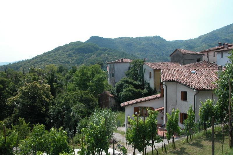 View of moutains - Vacation Rental at Cardoso Holiday House in Lucca - Lucca - rentals